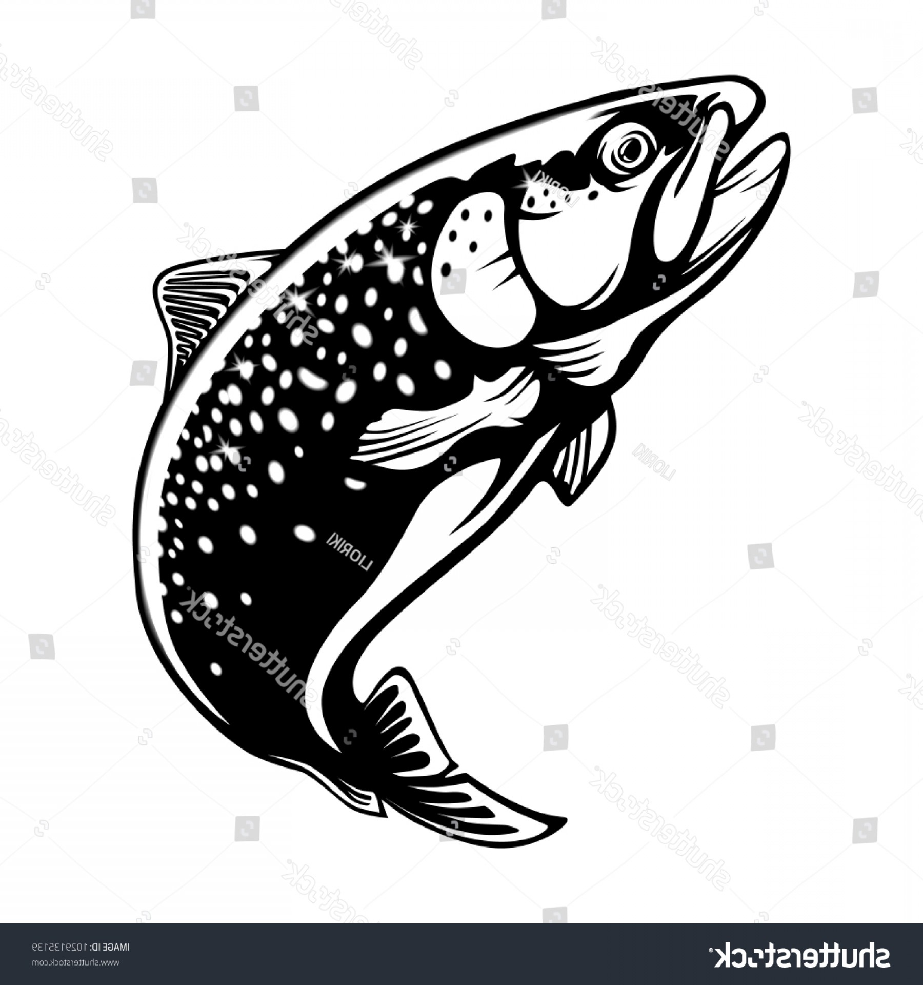 1800x1920 Trout Vector Art Arenawp