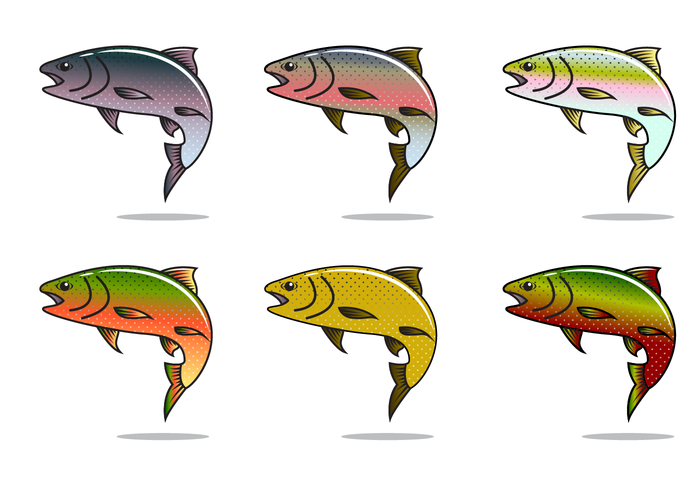 700x490 Free Rainbow Trout Vector