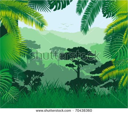 Rainforest Vector