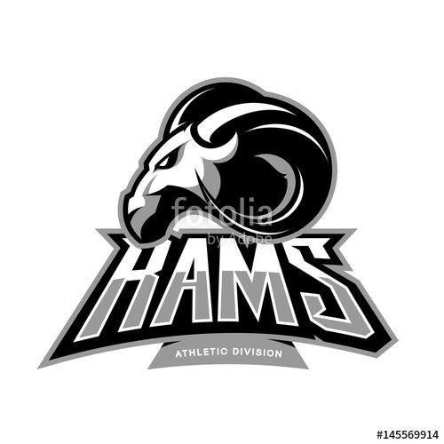 500x500 Furious Ram Sport Club Vector Logo Concept Isolated On White