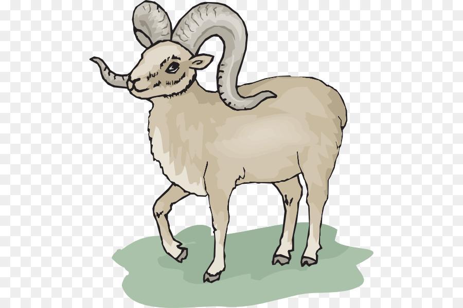 Ram Horn Vector