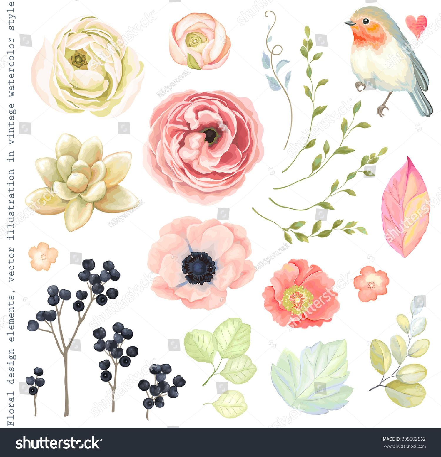 1500x1557 Collection Vector Flowers Ranunculus, Anemone, Succulent, Robin