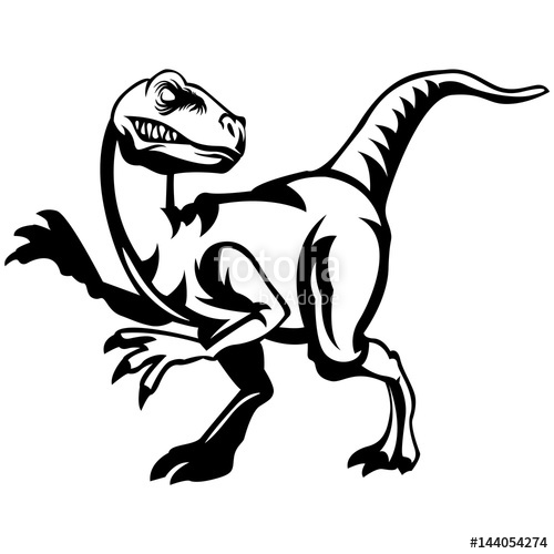 500x500 Velociraptor Lineart Stock Image And Royalty Free Vector Files