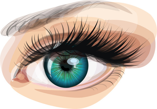 529x368 Eye Realistic Vector Free Vector Download (1,821 Free Vector) For
