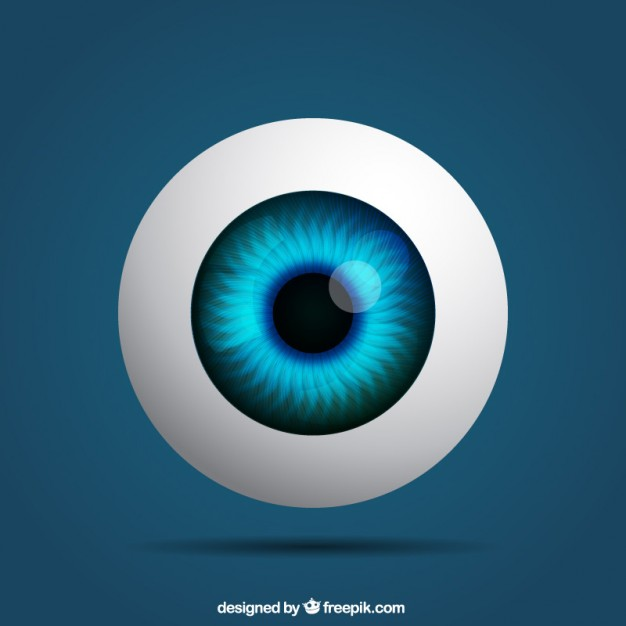626x626 Realistic Eye Vector Free Download