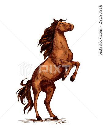 337x450 Rearing Wild Horse Vector Sketch Symbol