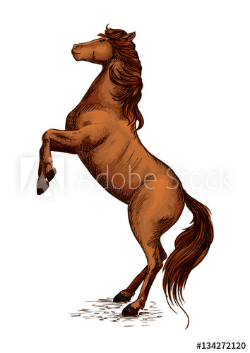 354x500 Equine Horserace Sport Symbol Of Rearing Horse