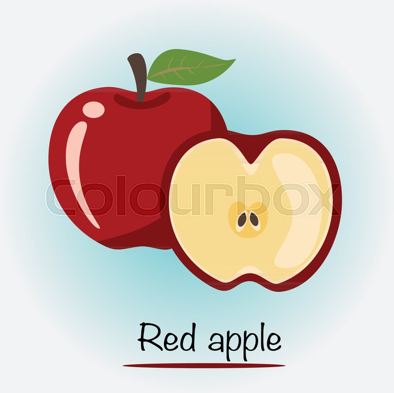 800x799 Red Apple Vector. Fruits And Vegetables. Vector Illustration