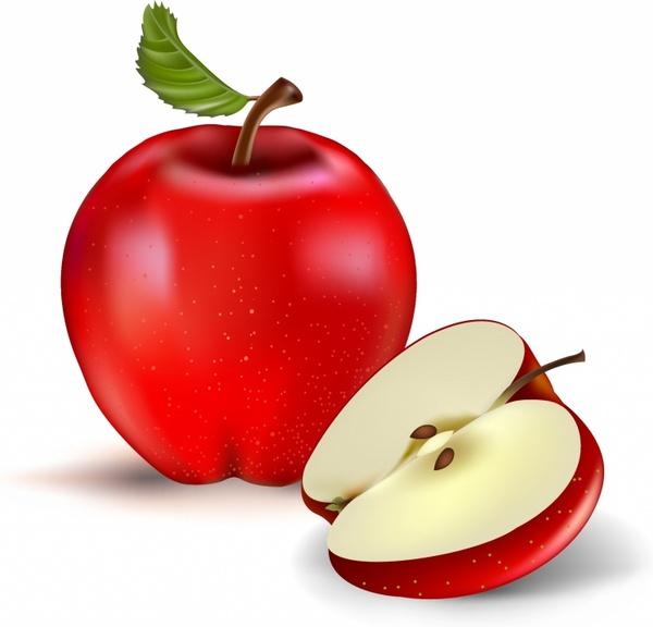 600x576 Red Apple And Half Free Vector In Adobe Illustrator Ai ( .ai