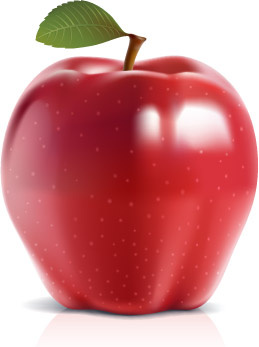 259x347 Shiny Red Apple Vector Free Vector In Encapsulated Postscript Eps