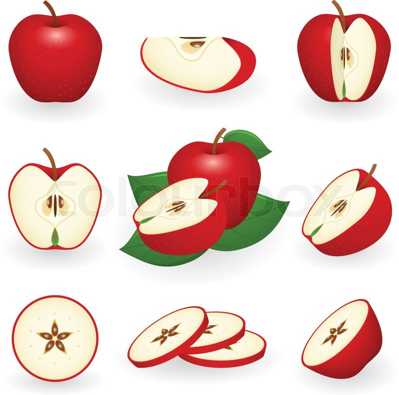 800x792 Vector Illustration Of Red Apple Stock Vector Colourbox