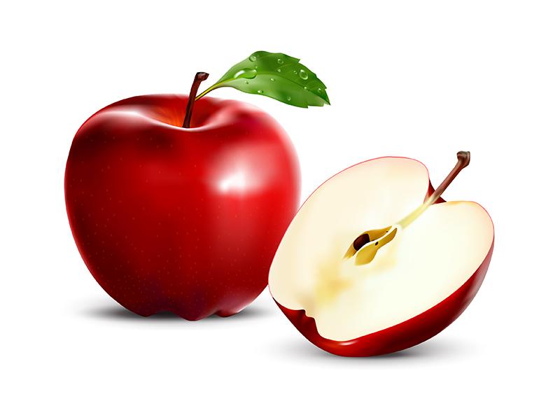 800x600 Red Apple (Vector) By Media Jamshidi