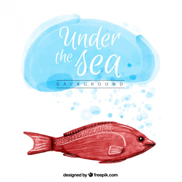 626x626 Watercolor Background With A Red Fish Vector Free Download