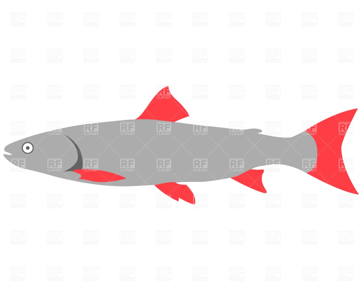 1200x960 Fish With Red Fins Vector Image Vector Artwork Of Plants And
