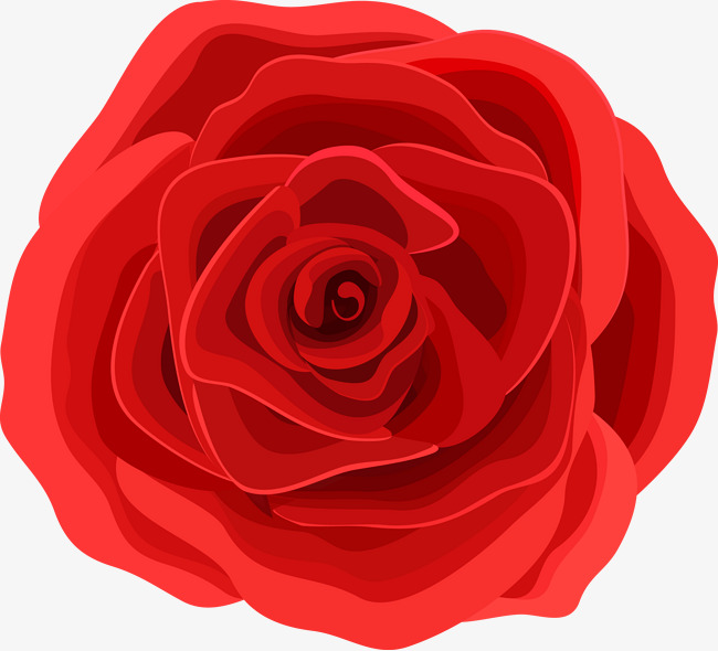 650x590 Red Roses Vector Material, Roses, Red Roses, Red Rose Png And