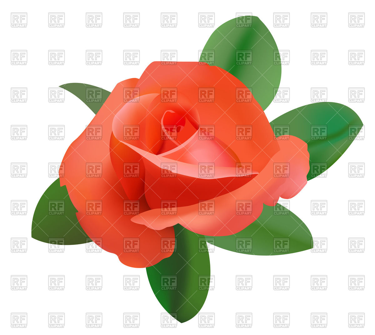 1200x1071 Red Rose Vector Image Vector Artwork Of Plants And Animals