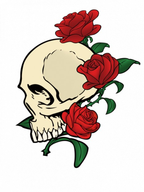 469x626 Skull With Red Rose Vector Stock Images