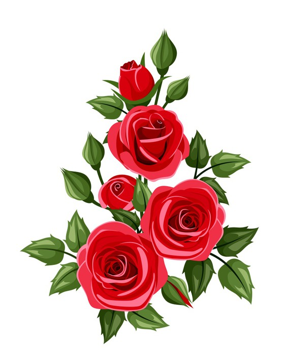 553x700 Branch Of Red Roses. Vector Illustration. Sticker We