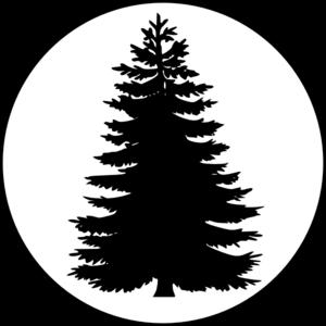 Redwood Tree Vector