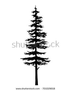 236x301 Image Result For Redwood Family Tree Illustration Family Reunion