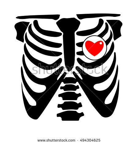 450x470 Collection Of Skeleton Rib Cage Clipart High Quality, Free