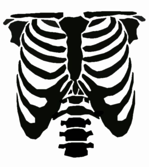 500x561 Skeleton Face Stencils Inspirational Vector Black And White