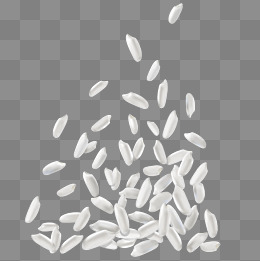 260x261 Rice Png, Vectors, Psd, And Clipart For Free Download Pngtree