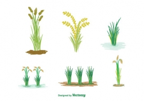 285x200 Rice Design Free Vector Graphic Art Free Download (Found 232 Files