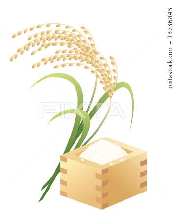 355x450 Polished Rice, Vector, Vectors