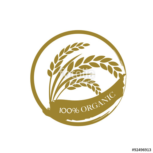 500x500 Rice Vector Stock Image And Royalty Free Vector Files On Fotolia