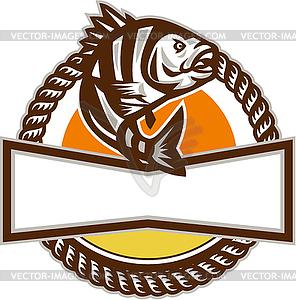 296x300 Sheepshead Fish Rope Circle Retro