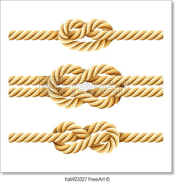 561x581 Free Art Print Of Rope Knots. Vector Illustration Of Rope Knots