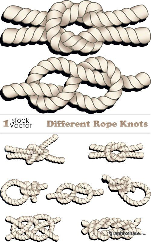 500x803 Different Rope Knots Vector Graphixshare Knots In 2018