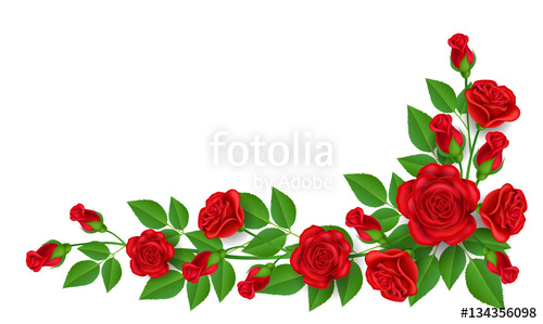 500x299 Realistic Red Rose Illustration With Green Leaf, For Corner And