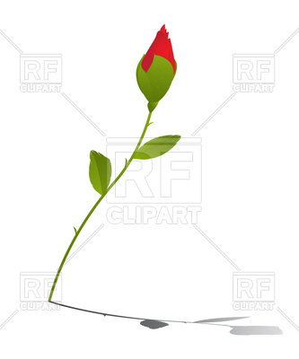 333x400 Red Rose Bud Vector Image Vector Artwork Of Plants And Animals