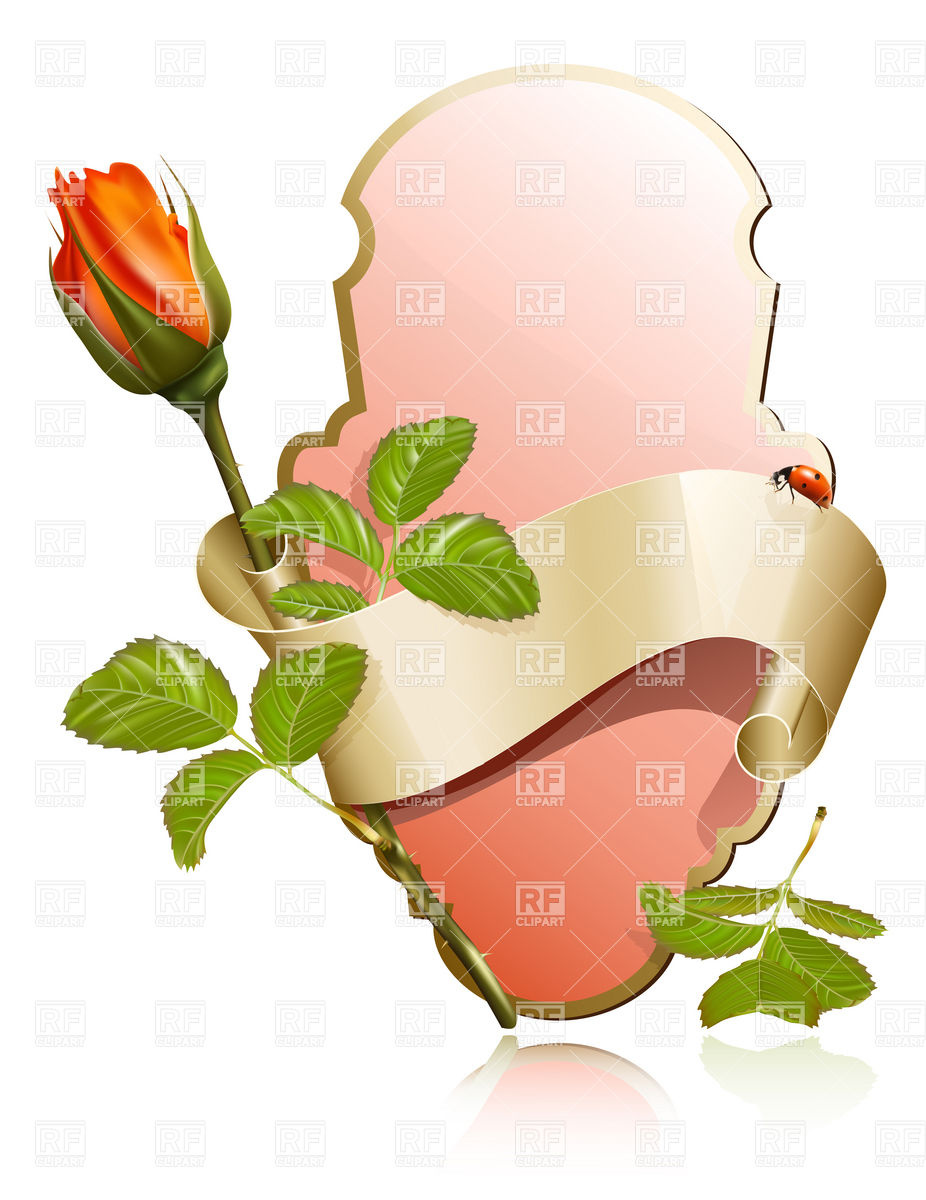 926x1200 Romantic Label With Ribbon And Rose Bud Vector Image Vector