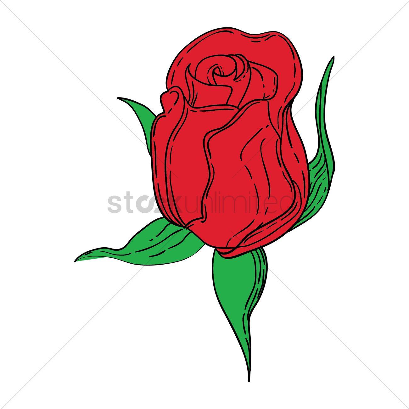 1300x1300 Rose Bud Vector Image