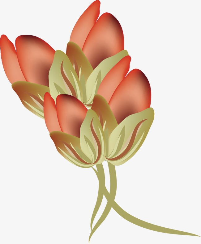 650x791 Vector Rose Bud, Rose Vector, Rose Clipart, Vector Png And Vector