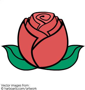 335x355 Download Rose Bud