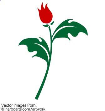 335x355 Download Rose Bud Branch
