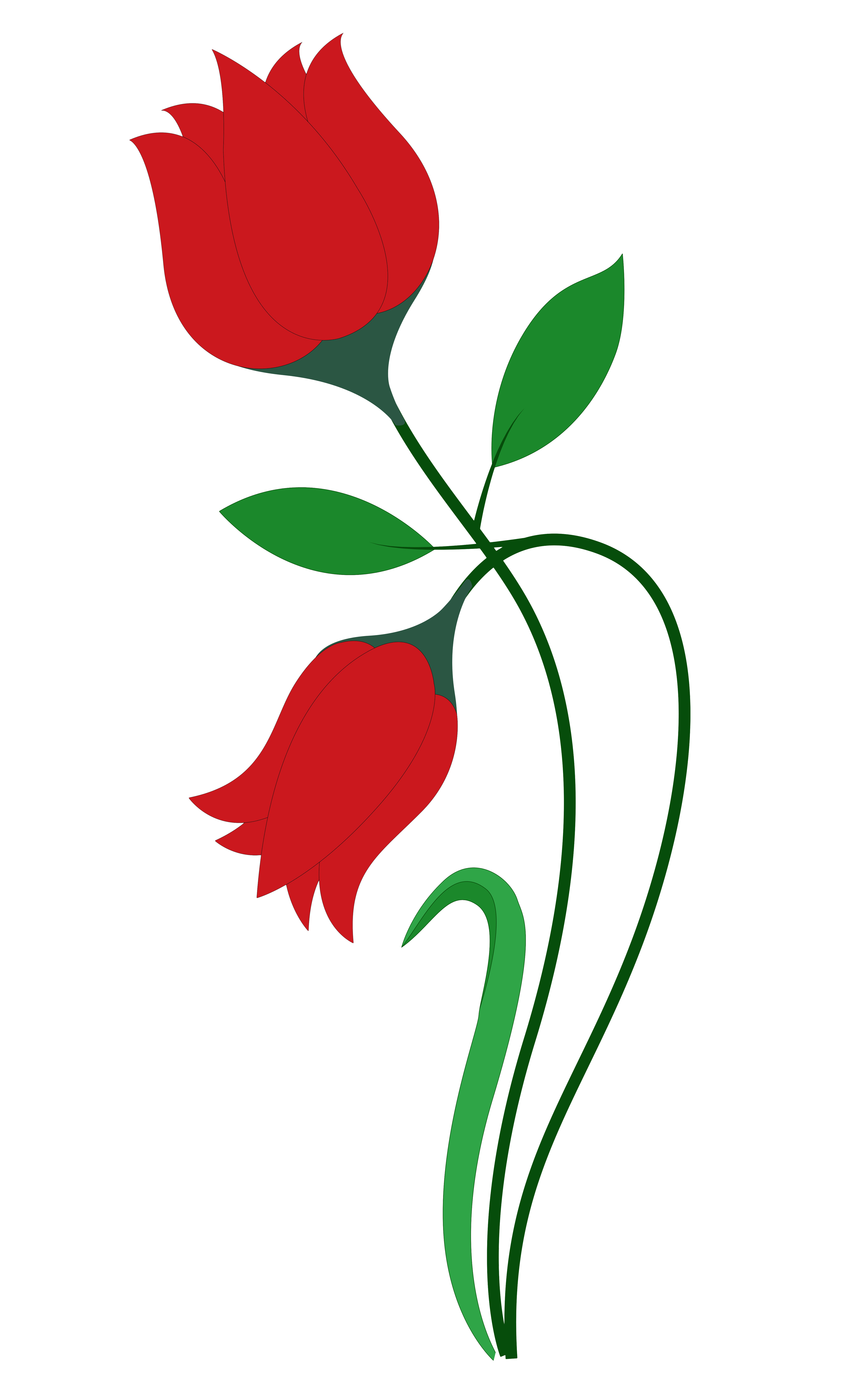 3400x5598 Rose Flower Vector Png Image