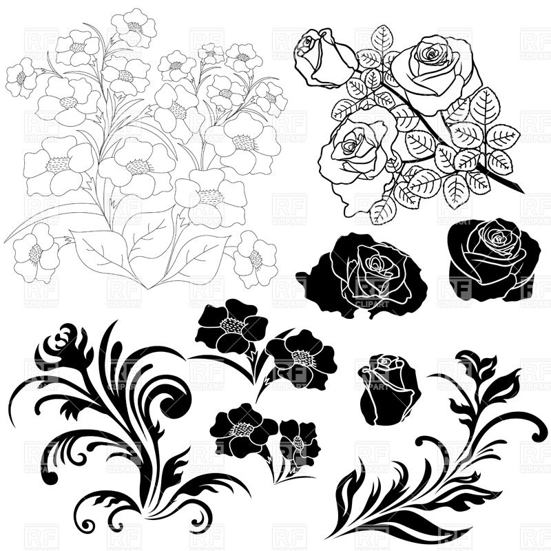 800x800 Silhouettes And Outlines Of Flowers, Roses Vector Image Vector