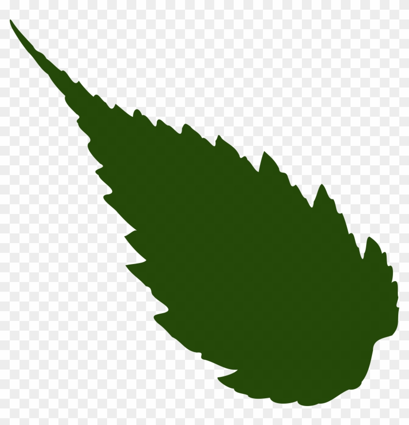 Rose Leaf Vector