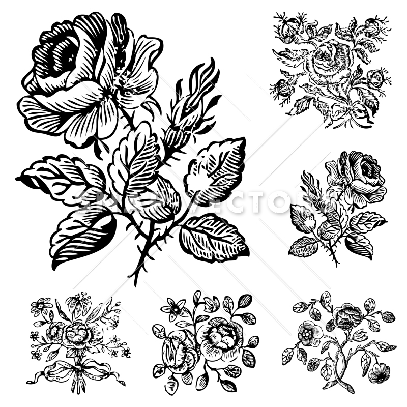 800x800 Vector Clipart Vintage Flower And Rose Ornaments