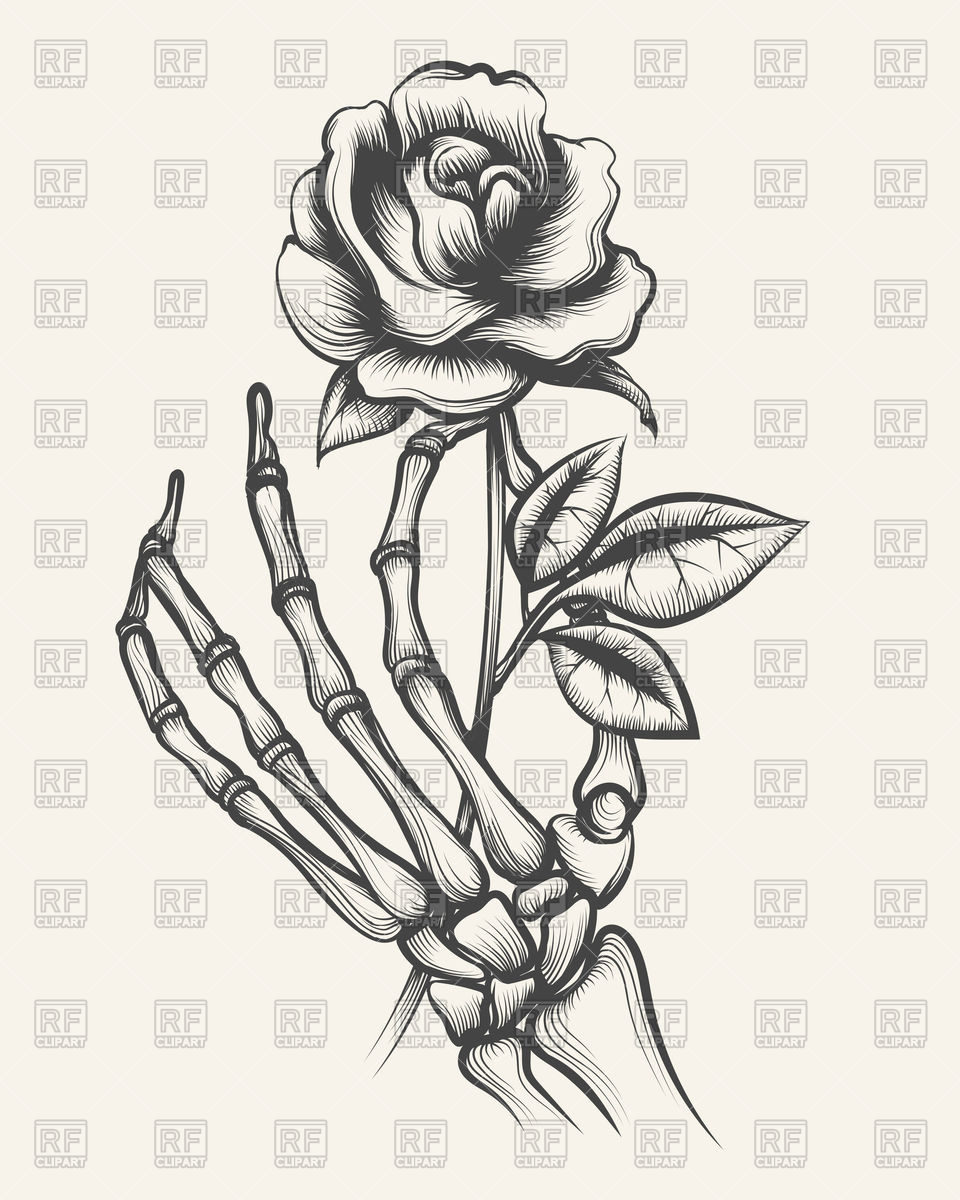 960x1200 Hand Drawn Skeleton Bones Hand With Rose Vector Image Vector