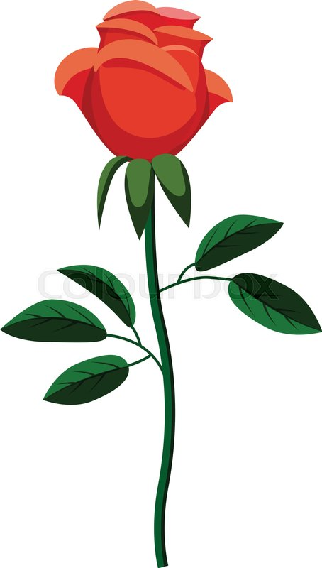 454x800 Rose Icon. Cartoon Illustration Of Rose Vector Icon For Web