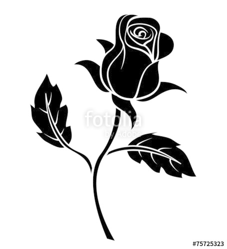 455x500 Black Silhoutte Of Rose Vector Illustration Stock Image And