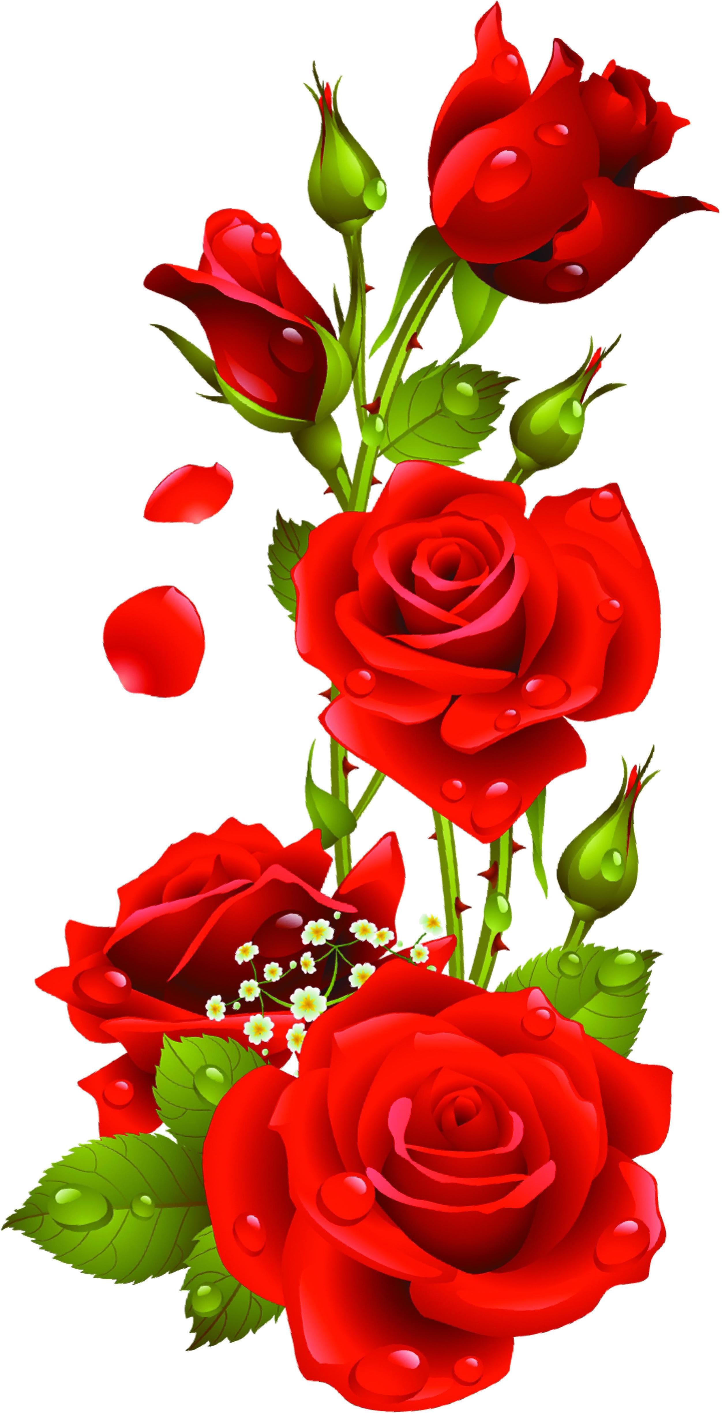 Rose Vector Png at GetDrawings | Free download