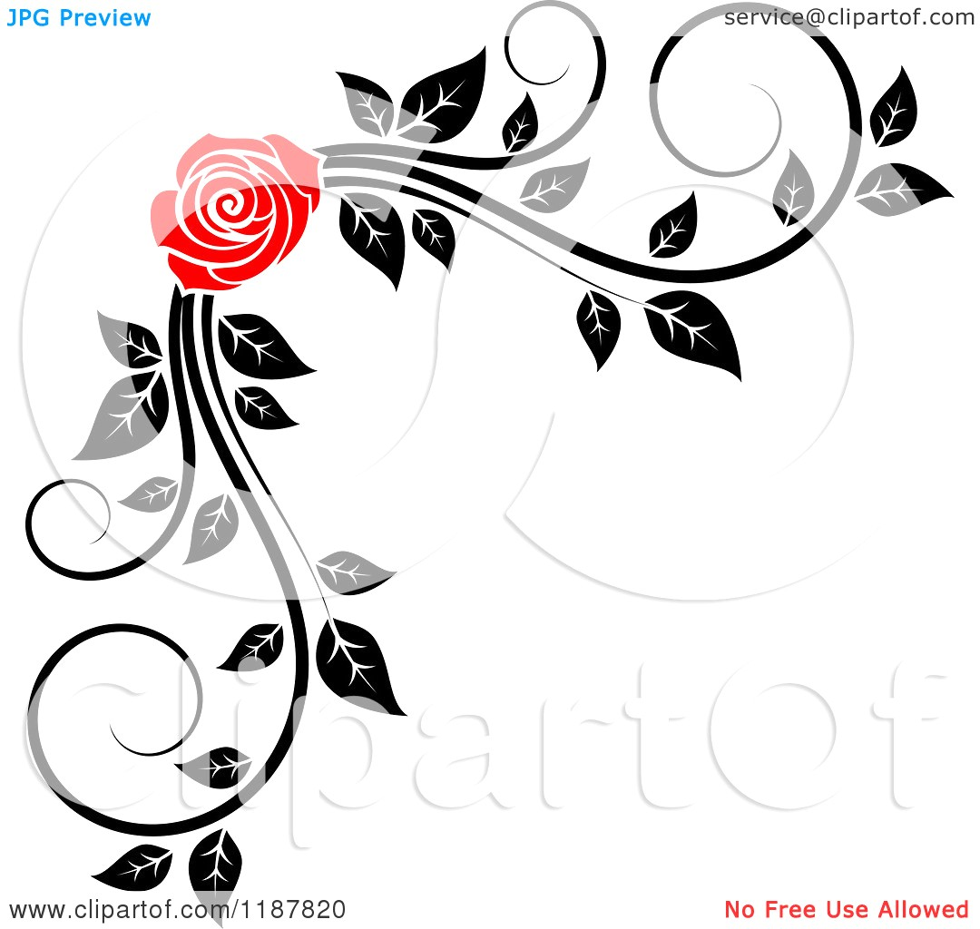 1080x1024 Simple Corner Border Clipart Of A Red Rose And Black White Foliage