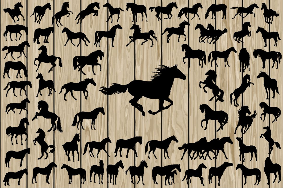 1200x799 62 Horse Svg, Horse Silhouette, Horse Vector, Running Horse Svg